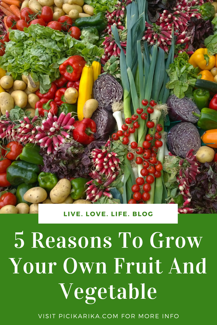 5 Reasons To Grow Your Own Fruit And Vegetable